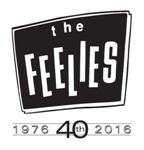 The Feelies 40th Anniversary